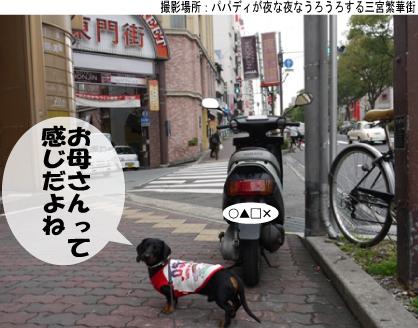 4_20091122134440.jpg