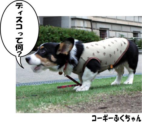 5_20090430213842.jpg