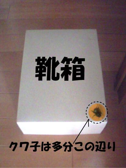 5_20090609165847.jpg