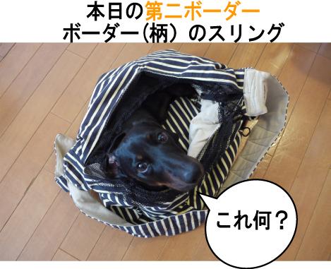 5_20090704142100.jpg