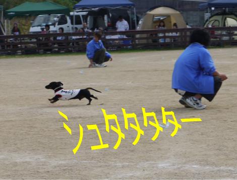 5_20091111221204.jpg