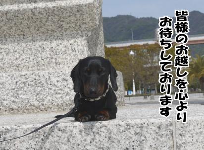 6_20090328222110.jpg