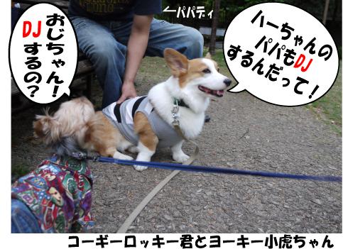 6_20090430214219.jpg