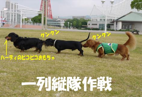 6_20090621151119.jpg
