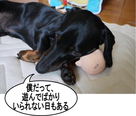 6_20090707200114.jpg