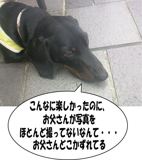 6_20090713140422.jpg