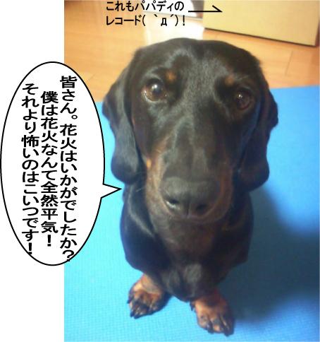 6_20090803012043.jpg