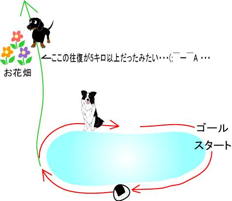 6_20091003015945.jpg