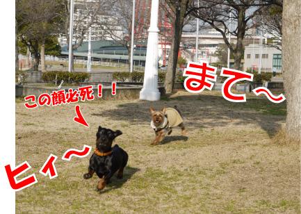7_20090310124952.jpg