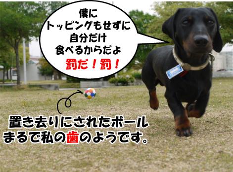 7_20090526124620.jpg