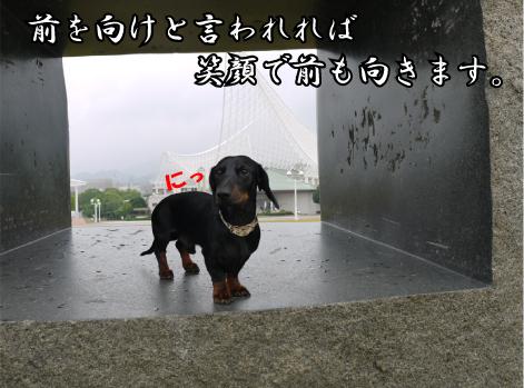 7_20090611191741.jpg
