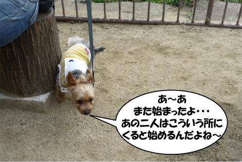 7_20090720223530.jpg