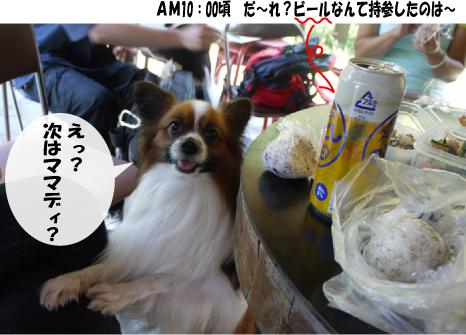 7_20091001133943.jpg