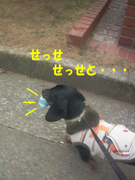 7_20100125114359.jpg
