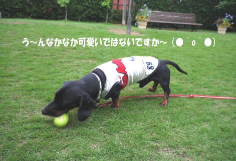 8_20090715145415.jpg