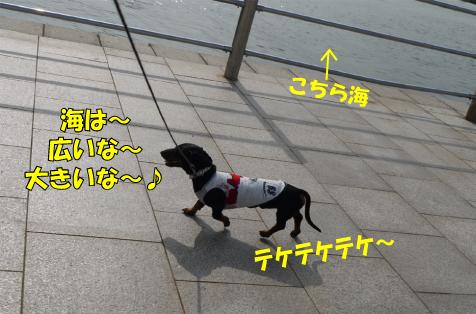 8_20090725011209.jpg