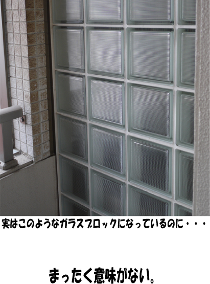 8_20090728220101.jpg