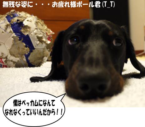 8_20090915004926.jpg
