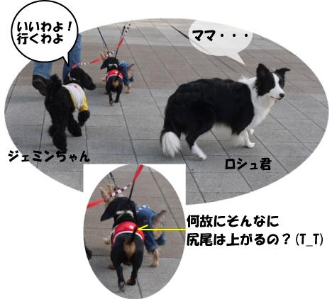 8_20091014011642.jpg