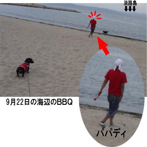 8_20091024222800.jpg