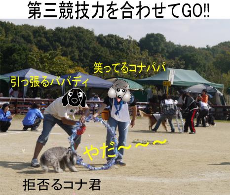 8_20091112170734.jpg