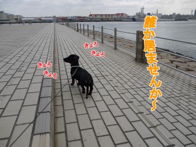 9_20090307215708.jpg