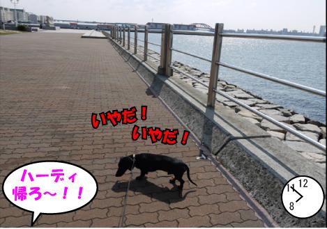 9_20090427134551.jpg
