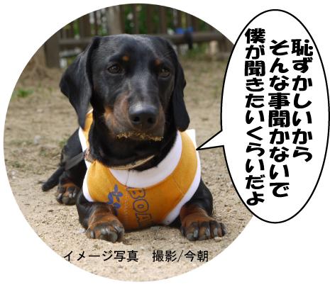 9_20090609172635.jpg
