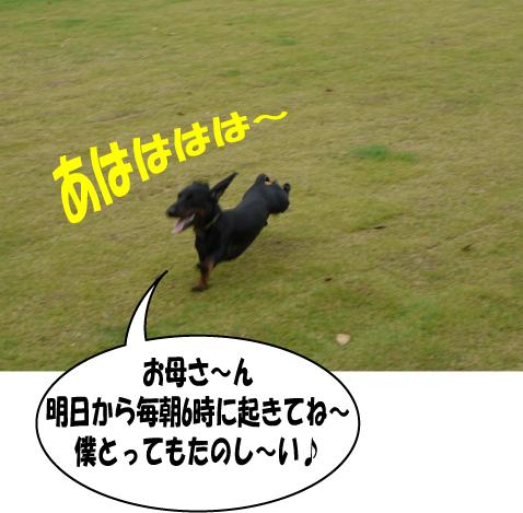 9_20090801163049.jpg