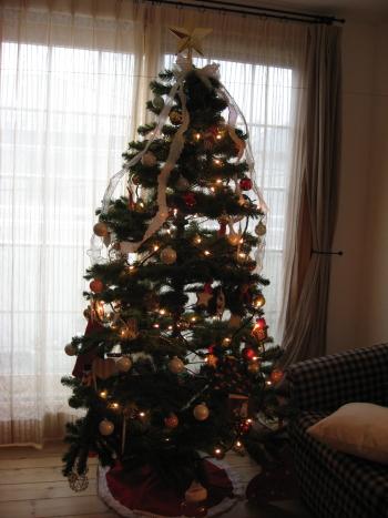 2008-xmas-tree.jpg