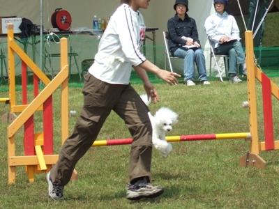 2006_05210012.jpg