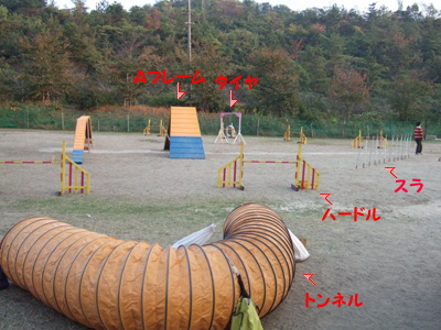 2006_10300006.jpg