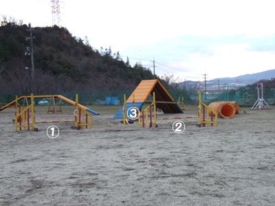 2007_01290007.jpg