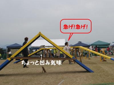IMG_5812.jpg