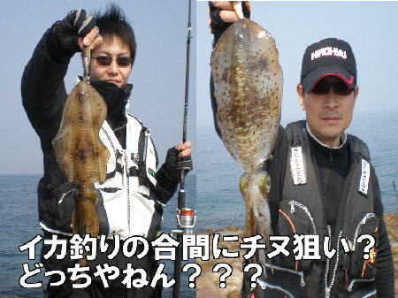 ガニ瀬イカ