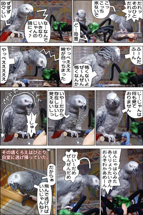 ノンフィクション劇場-No.33