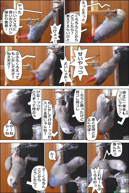 ノンフィクション劇場-No.34