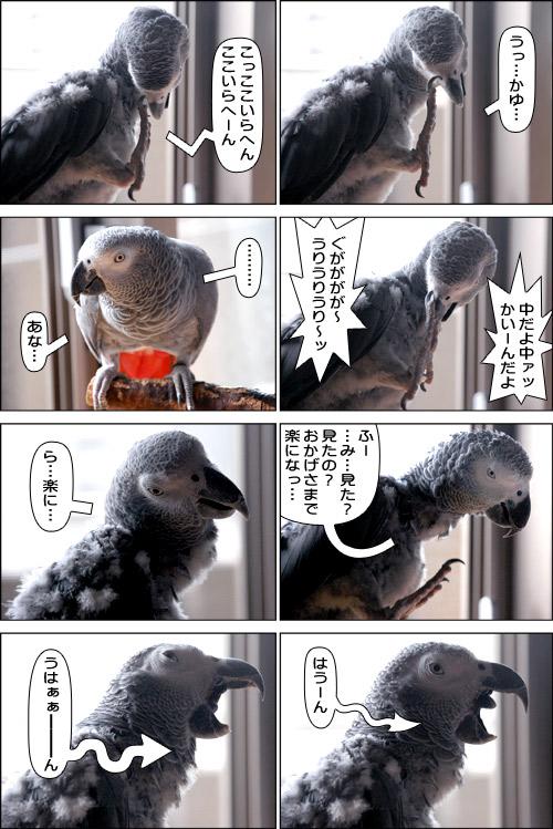 ノンフィクション劇場-No.35
