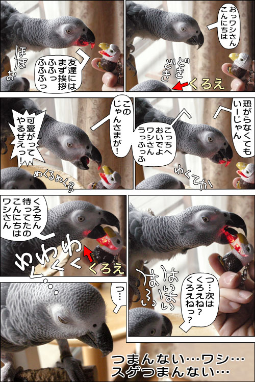 ノンフィクション劇場-No.38