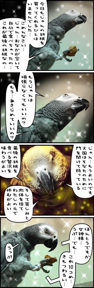 じゃんくろ劇場-No.43