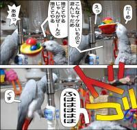 ノンフィクション劇場-No.44-b-1