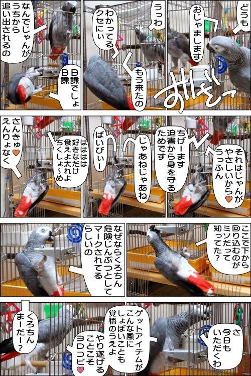 ノンフィクション劇場-No.45