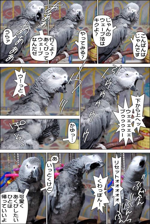 ノンフィクション劇場-No.49