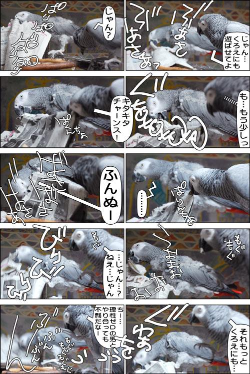 ノンフィクション劇場-No.51