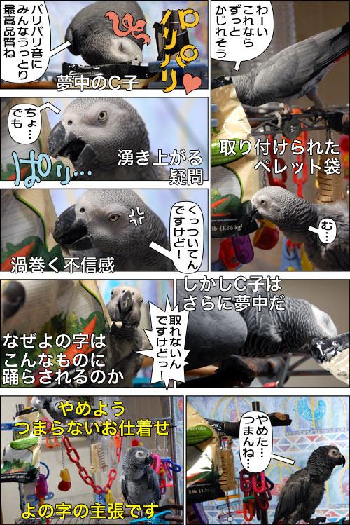 ノンフィクション劇場-No.53