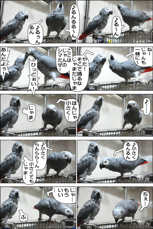 ノンフィクション劇場-No.55