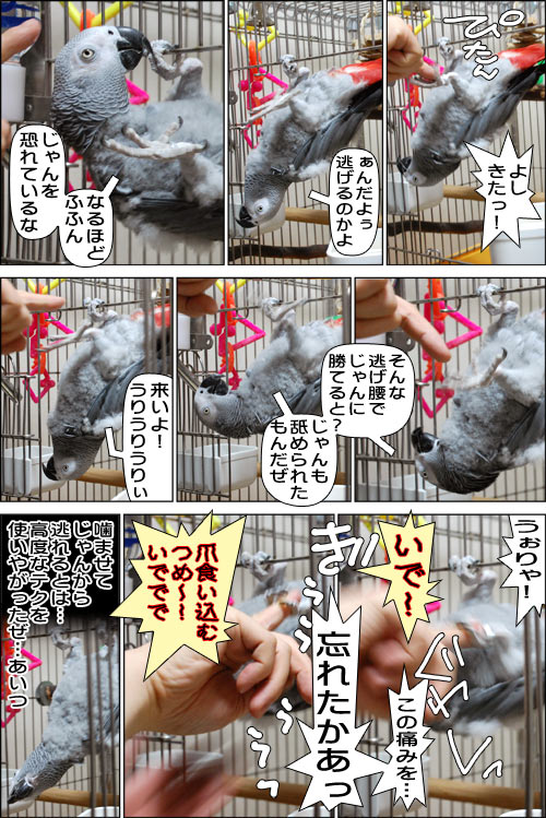 ノンフィクション劇場-No.56