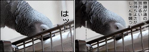 ノンフィクション劇場-No.58-b