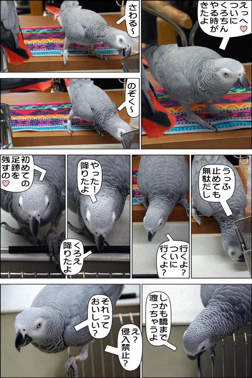 ノンフィクション劇場-No.59-a