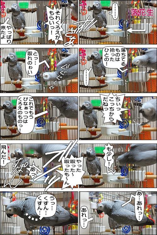 ノンフィクション劇場-No.61